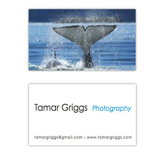 bc-tamargriggs